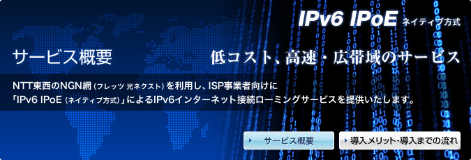 ipv6 ipoe ネイティブ方式 サービス概要 ソリューション bbix株式会社