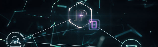 IPv6 IPoE ローミング接続サービス